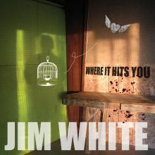 Jim White - Where It Hits You - DIGITAL