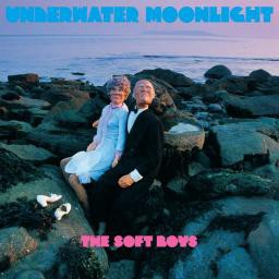 The Soft Boys Underwater Moonlight - LP