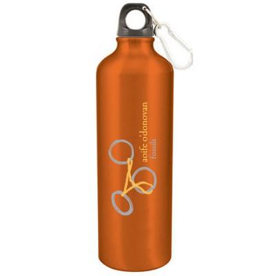 Aoife O'Donovan - Fossils - Aluminum Water Bottle