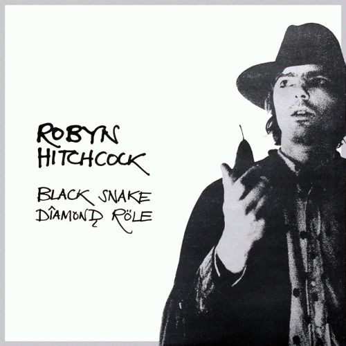 Robyn Hitchcock - Black Snake Diamond Role