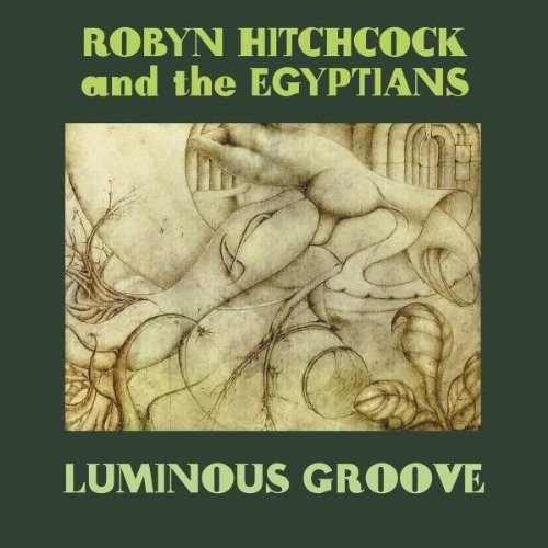 Robyn Hitchcock - Luminous Groove Box Set