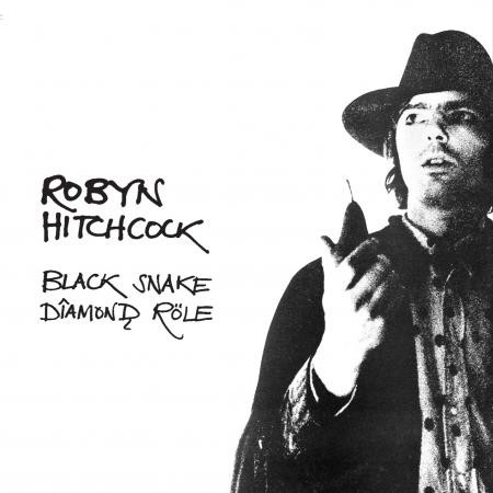 Robyn Hitchcock Black Snake Diamond Role - CD