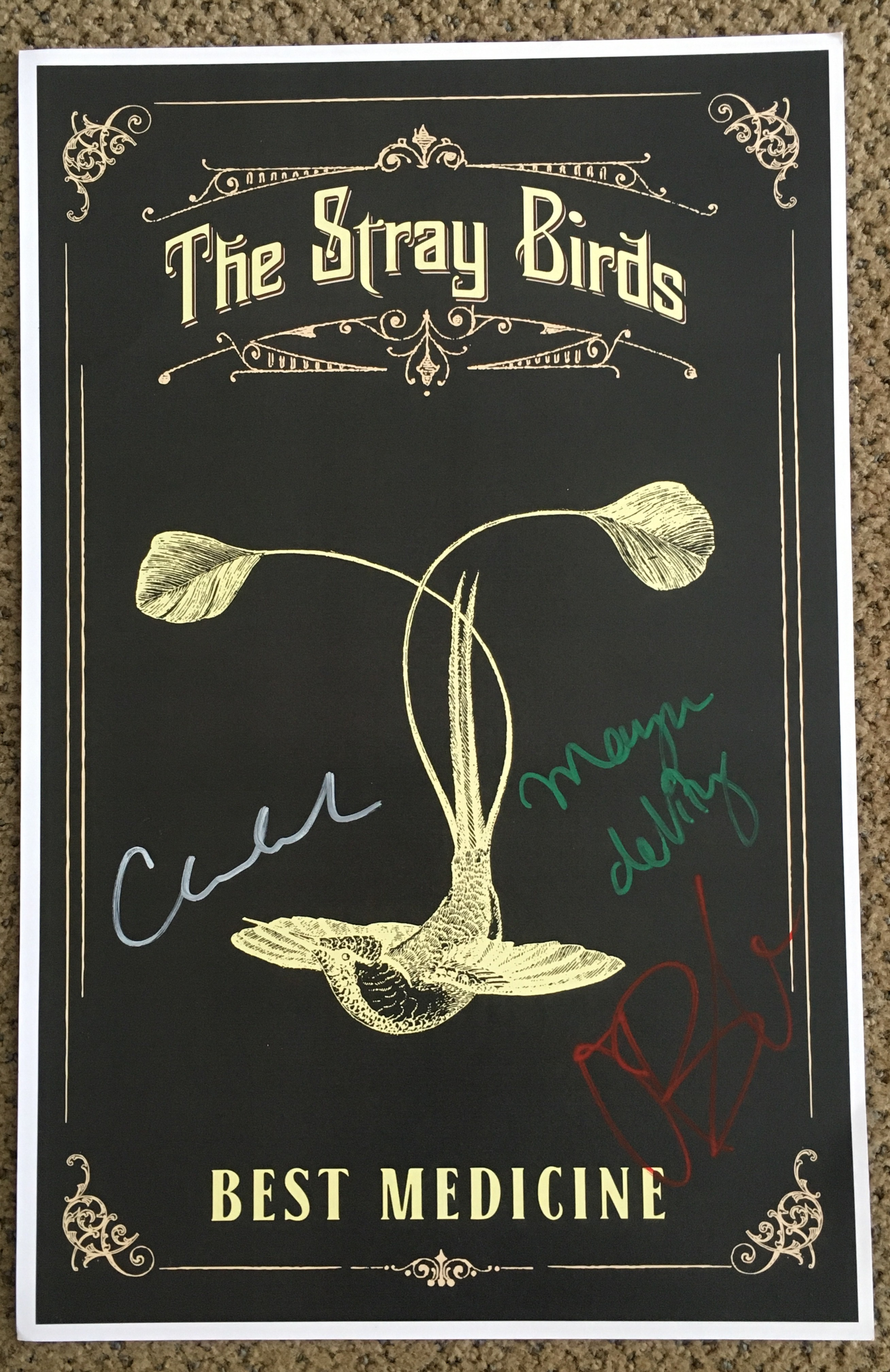 The Stray Birds - Best Medicine (AUTOGRAPHED POSTER)