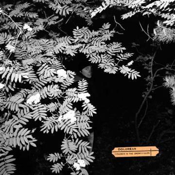 Dolorean - Violence in the Snowy Fields - CD + Merch Bundle