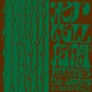 The Apples in stereo - Her Wallpaper Reverie - LP (REISSUE)