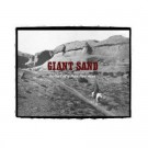 Giant Sand Ballad of a Thin Line Man - CD