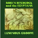 Robyn Hitchcock - Luminous Groove - Bundle